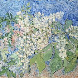 Kunst Ausstellung Van Gogh in Potsdam