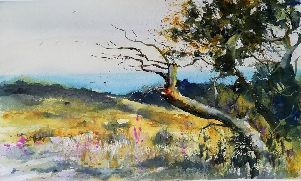 Hiddensee Aquarell Dornbusch