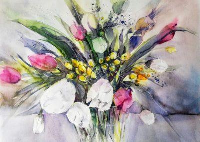 Fresien-Tulpen