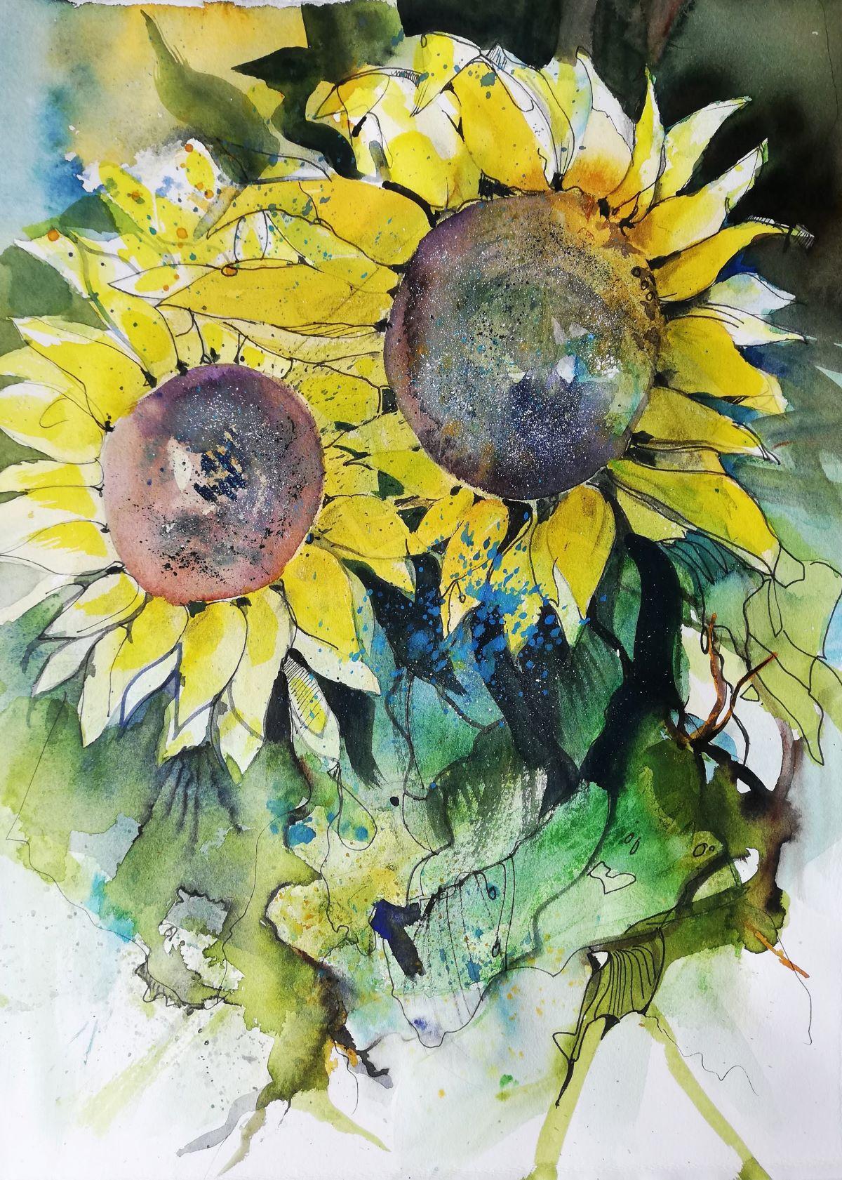 Sonnenblumen immer wieder